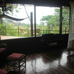 Bungalow View of Rainforest