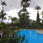 Panoramic view of pool, garden and lanai