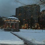 Boston Common opposite the hotel