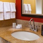 Foto de Courtyard by Marriott Tampa Westshore/Airport