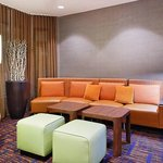 Foto di Courtyard by Marriott Tampa North / I-75 Fletcher