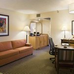 Embassy Suites Hotel Anaheim North Foto