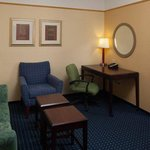 Springhill Suites by Marriott St. Petersburg/Clearwater Foto