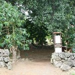 Photo of Kona Coffee Living History Farm