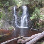 Waterfall - bushwalk from The Peoples Park