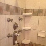 great multi fawceted shower