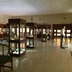 Inside of the museum, equip with the most polite security guard!
