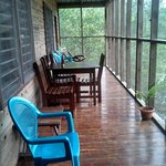 Our screened porch overlooking the crocodile pond