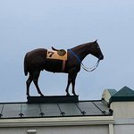 look for the race horse on the roof
