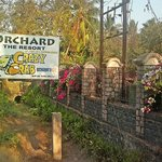Orchard, The Resort resmi
