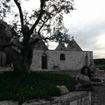 Photo de B & B Masseria Montanaro