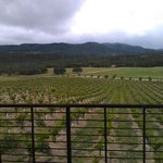 Foto de Christopher Joyce Vineyard and Inn