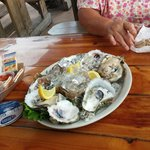 Oysters, nice and chilled for lunch