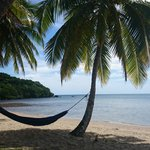 Papageno Resort Fiji의 사진