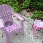 Φωτογραφία: North Captiva Island Club Resort
