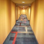 Foto Fairfield Inn East Rutherford Meadowlands