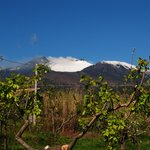 Photo de La Cirasella dell'Etna