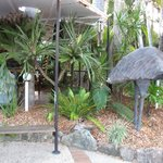 Foto de Noosa Backpackers Resort