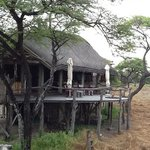 Photo de Onguma Treetop Camp
