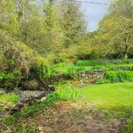 Abercelyn Country House garden