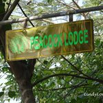 Foto de Peacock Lodge