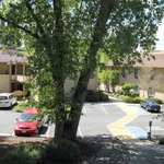 Foto de BEST WESTERN PLUS Sonora Oaks Hotel & Conference Center