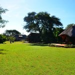 Foto van Imbabala Zambezi Safari Lodge