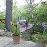 Φωτογραφία: Chuparosa Inn Bed and Breakfast
