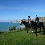 The Farm at Cape Kidnappers resmi