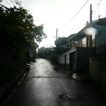 Street in front of property
