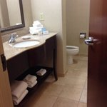Φωτογραφία: Hampton Inn & Suites Atlanta Airport West/Camp Creek Pkwy