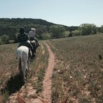 Trail Ride 05.2014