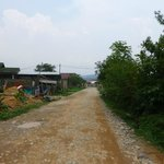 unpaved road leading to main road