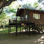 Photo de Bonamanzi Game Reserve