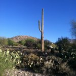 Foto de Canyon Ranch in Tucson