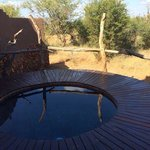 Foto van Madikwe Safari Lodge