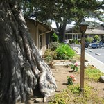 San Simeon Pines Resort照片