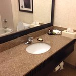 Embassy Suites Hotel Chicago Downtown resmi