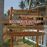 Ecowave Travels