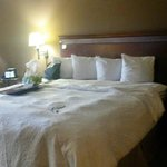 Foto van Hampton Inn and Suites Dallas - DFW Airport North / Grapevine