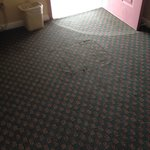 Carpeting in bad repair