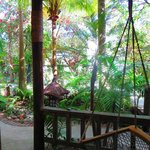 Our balcony, swinging chair and trees