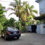 Foto de Anchorage Jamaica Bed & Breakfast