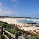 Asilomar Beach is just a 5 minute walk away!