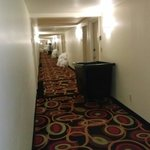 Photo de Crowne Plaza Hotel New Orleans Airport