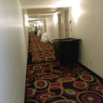 Φωτογραφία: Crowne Plaza Hotel New Orleans Airport