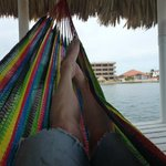 Relaxing in the dock hammock.