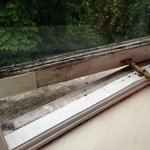 Rotten window frames
