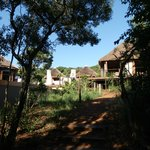 Thanda Private Game Reserve resmi