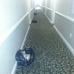 Upon arrival we are going to our room-trash lined the halls. A little before 3pm. Thursday May 8